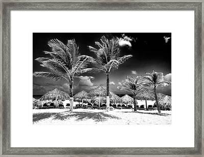 Punta Palms Framed Print by John Rizzuto