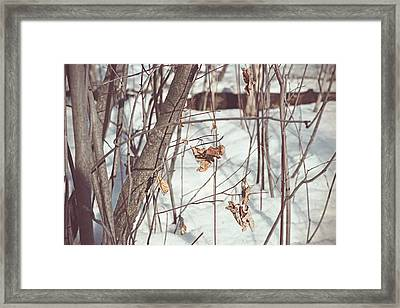 Puppets Framed Print by Cendrine Marrouat