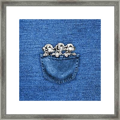 Puppies In A Pocket Framed Print
