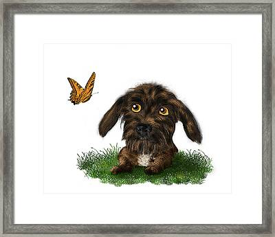 Puppy And Butterfly Framed Print