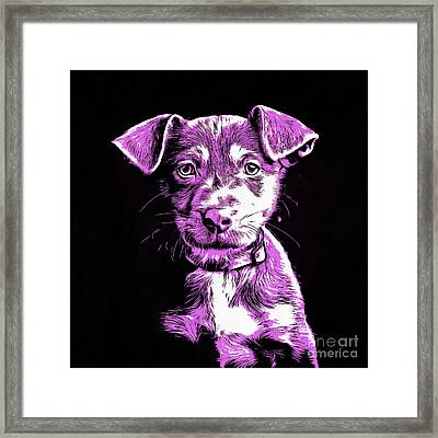 Puppy Dog Graphic Novel Drawing IIi Framed Print by Edward Fielding