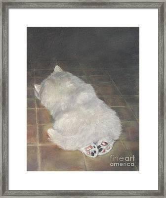Puppy Feet Framed Print by Elizabeth Ellis