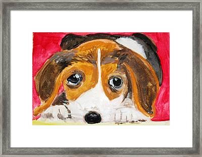 Puppy For Love Framed Print