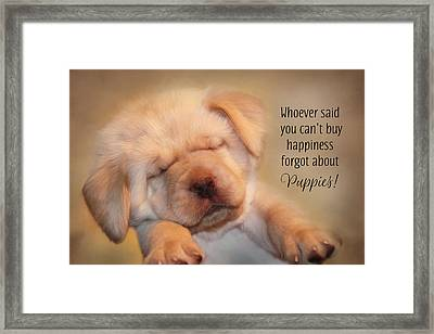 Puppy Happiness Framed Print by Lori Deiter