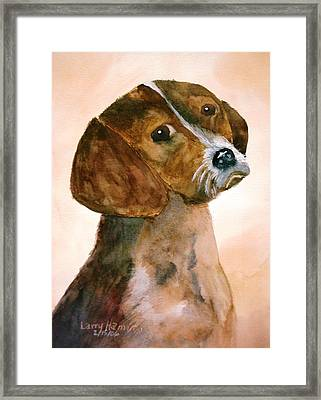 Puppy Framed Print by Larry Hamilton