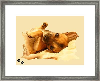 Puppy Love Framed Print by Amanda Vouglas