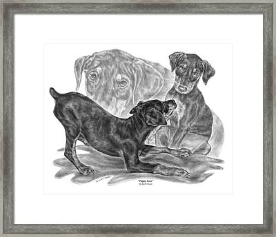 Puppy Love - Doberman Pinscher Pup Framed Print by Kelli Swan