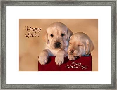 Puppy Love Framed Print by Lori Deiter