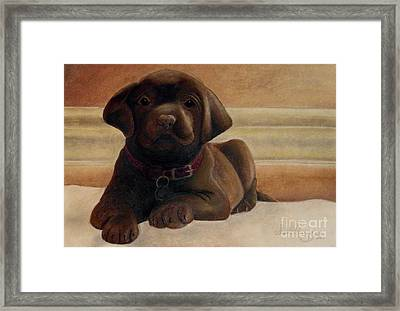 Puppy Love Framed Print by Susan Clausen