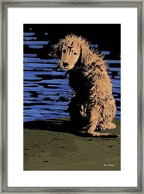 Puppy On Pier Pop Art Framed Print
