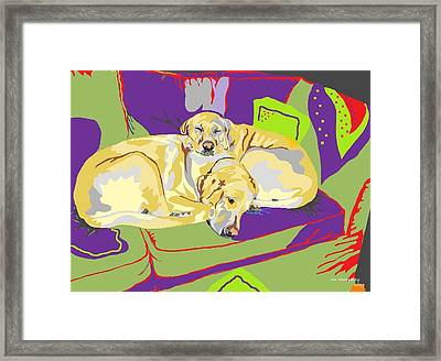 Puppy Pile Of Two Framed Print by Su Humphrey