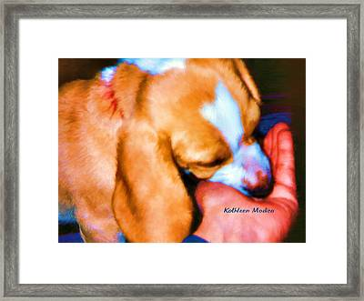 Puppy Time Framed Print