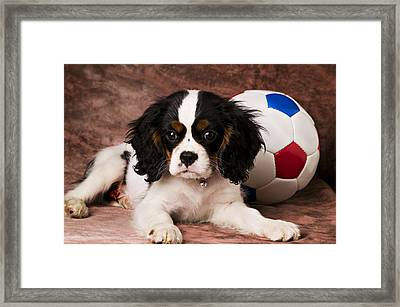 Puppy With Ball Framed Print by Garry Gay