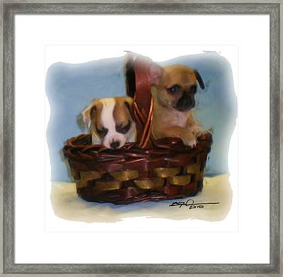 Pups In A Basket Framed Print by Beverly Johnson