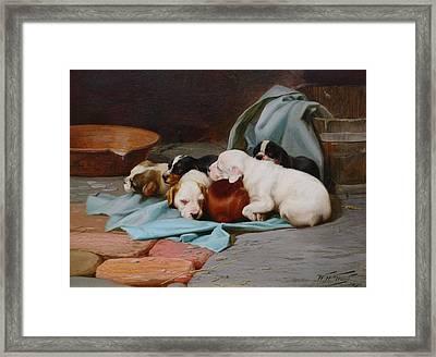 Pups Slumber Framed Print