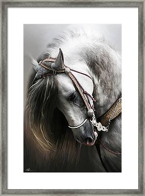 Pura Spanish Elegance Framed Print by Paul Miners
