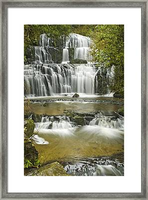 Purakanui Falls Framed Print by Andrea Cadwallader