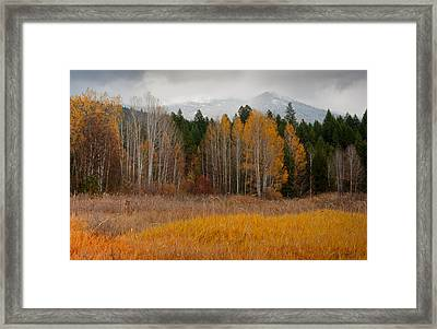 Purcell Gold Framed Print by Idaho Scenic Images Linda Lantzy