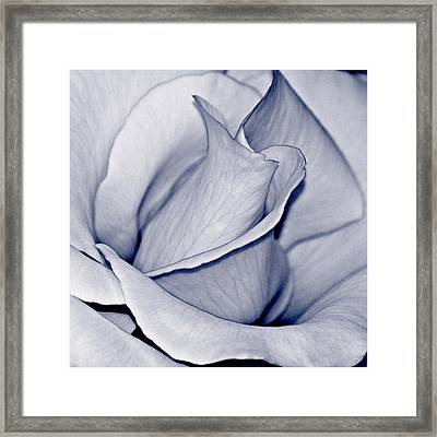 Pure Framed Print by Bill Owen