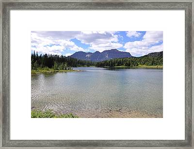 Pure Framed Print by Greg McDonald