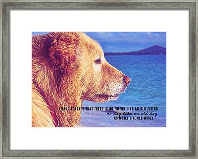 Pure Joy Quote Framed Print by JAMART Photography