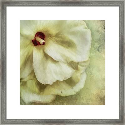 Pure Magnificence Framed Print