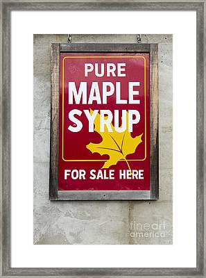 Pure Maple Syrup For Sale Here Sign Framed Print by Edward Fielding