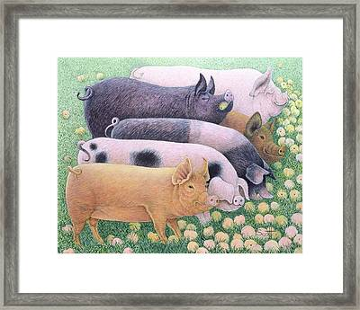 Pure Pleasure Framed Print