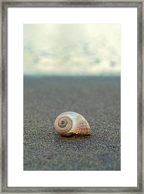 Pure Framed Print by Stelios Kleanthous