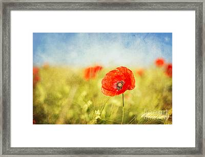 Pure Summer Feelings Framed Print
