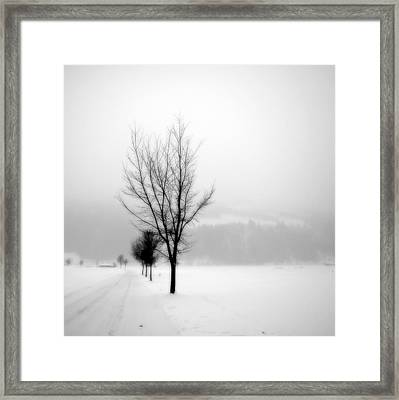 Pure White II Framed Print