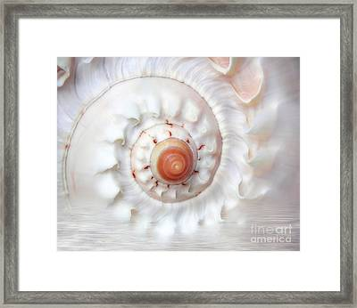 Purify Framed Print by Jacky Gerritsen