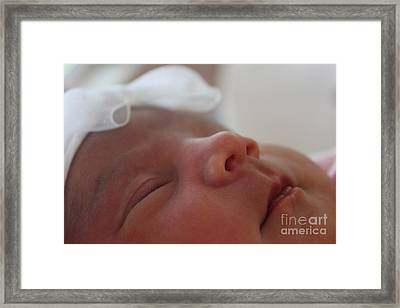 Framed Print featuring the photograph Purity And Innocence by Terri Thompson