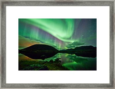 Purple And Green Framed Print