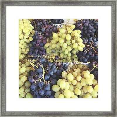 Purple And Green Grapes Framed Print