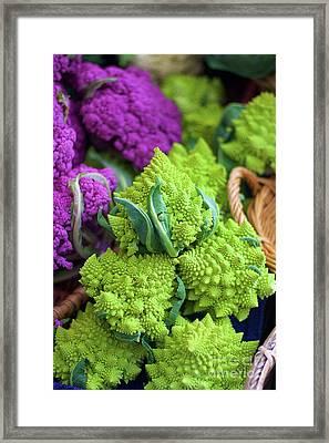 Purple And Romanesco Cauliflower Framed Print