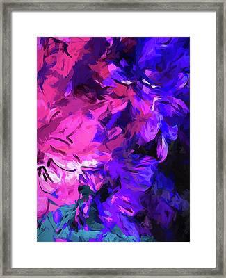 Purple Behind Pink Framed Print