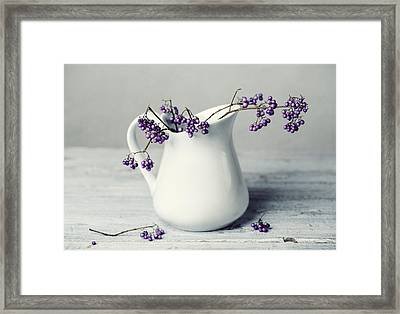 Purple Berries Framed Print by Nailia Schwarz