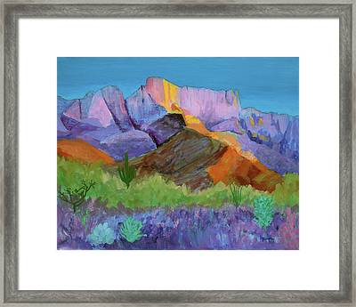 Framed Print featuring the painting Purple Catalina by Mordecai Colodner