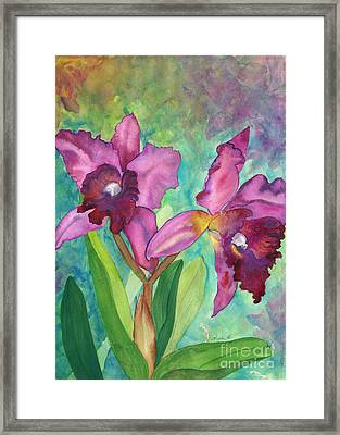 Purple Cattleya Orchid Framed Print