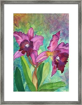 Purple Cattleya Orchid Framed Print by Lisa DeBaets
