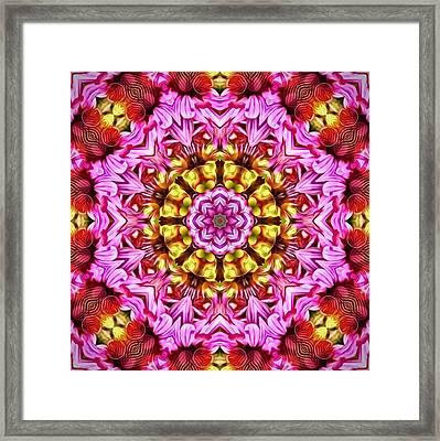 Purple Coneflower Mandala Framed Print