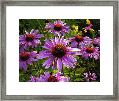 Purple Dance Framed Print