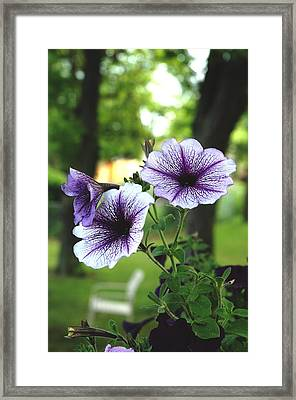 Framed Print featuring the photograph Purple Delights by Kicking Bear  Productions