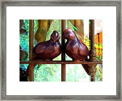 Purple Doves 2 Framed Print by Mexicolors Art Photography
