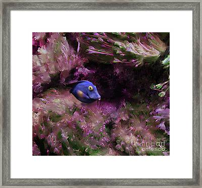 Purple Fish In Pink Grass Framed Print