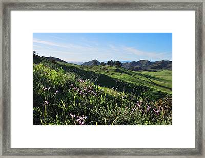 Framed Print featuring the photograph Purple Flowers And Green Hills Landscape by Matt Harang