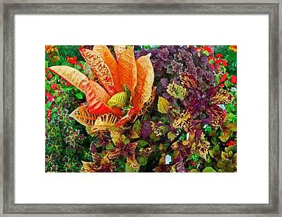 Purple Flowers Framed Print by Michael Thomas