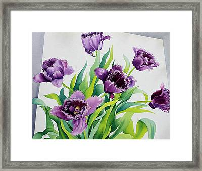 Purple Fringe Tulips Framed Print by Christopher Ryland
