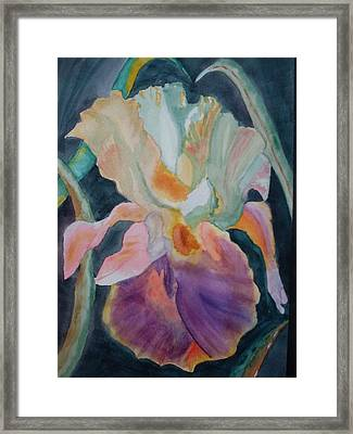 Purple Glory Framed Print by Warren Thompson